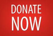 DonateNow-web