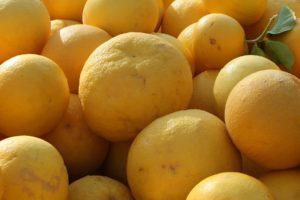 Glean Citrus 1-011610